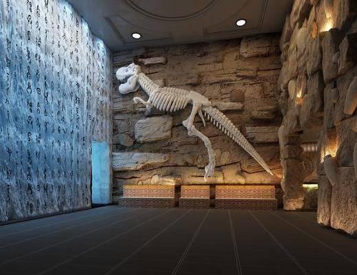 恐龙化石, 博物馆, 现代