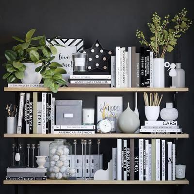 置物架, 书籍, 摆件, 装饰品, 陈设品, 盆栽, 绿植植物, 现代