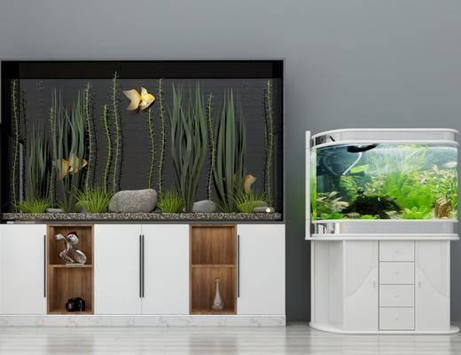 现代鱼缸, 鱼, 绿植, 柜子, 现代