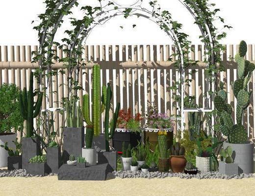 盆栽, 植物, 盆栽组合, 花草