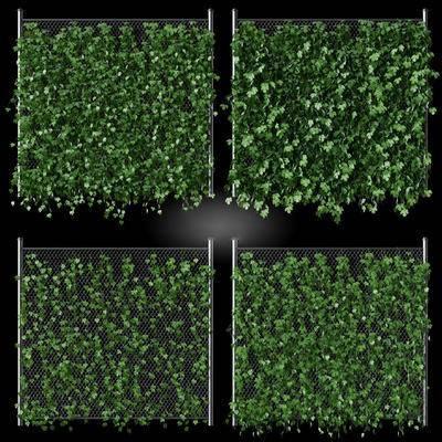 藤蔓, 植物, 植物墻, 現代, 綠植, 植物背景墻