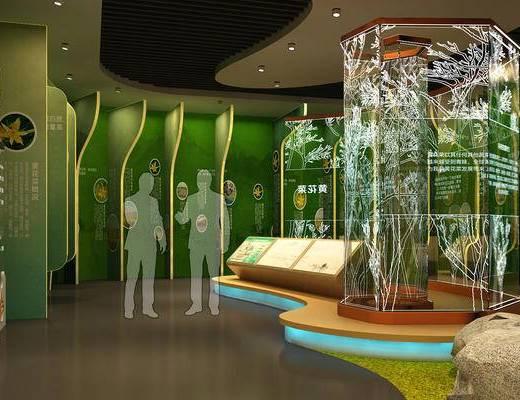 现代, 农业, 产品, 展厅, 展馆, 文化, 展示