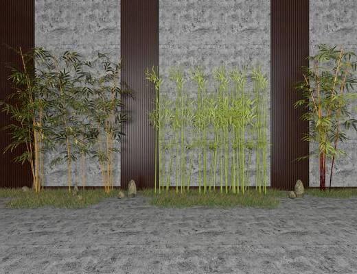 竹子, 植物, 景观小品