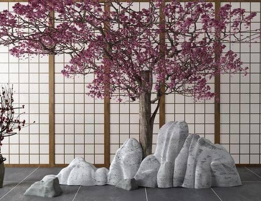 梅花, 树木, 庭院, 石头