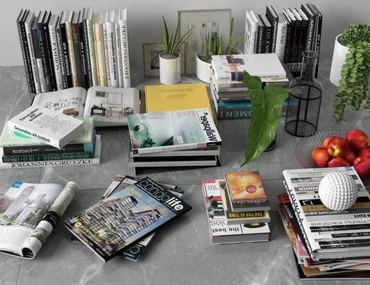 书籍杂志, 现代