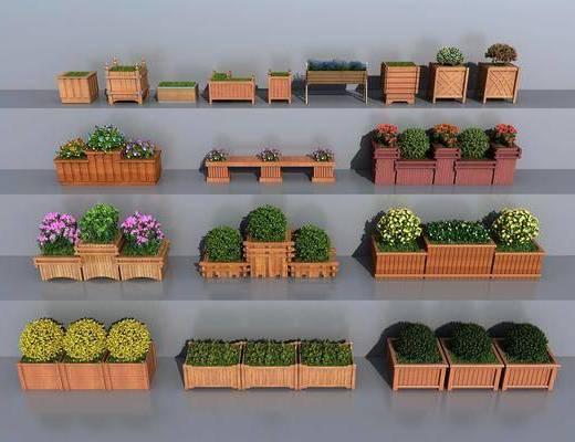 花草, 植物, 绿植