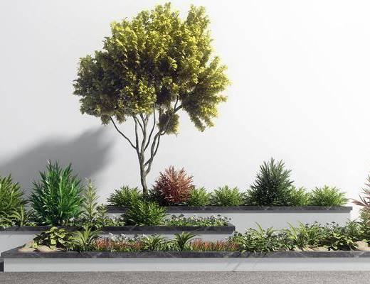 园艺小品, 园林景观, 植物