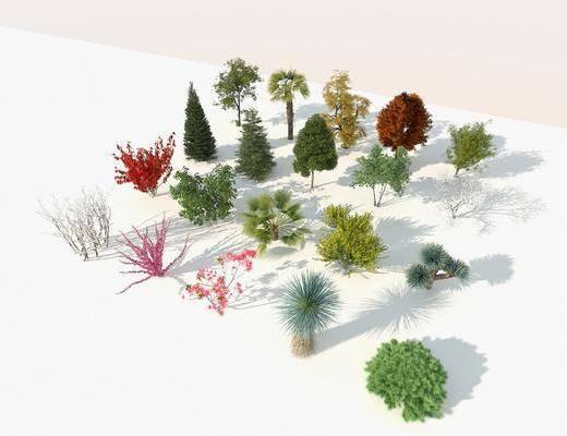鳥瞰樹, 行道樹, 庭院樹, 四季樹, 樹木組合