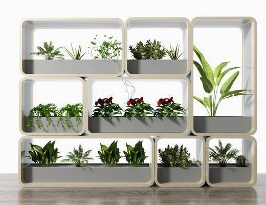 花架隔斷, 綠植植物, 現代