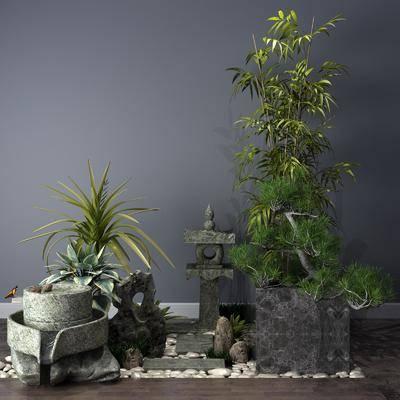 景观, 植物, 树木