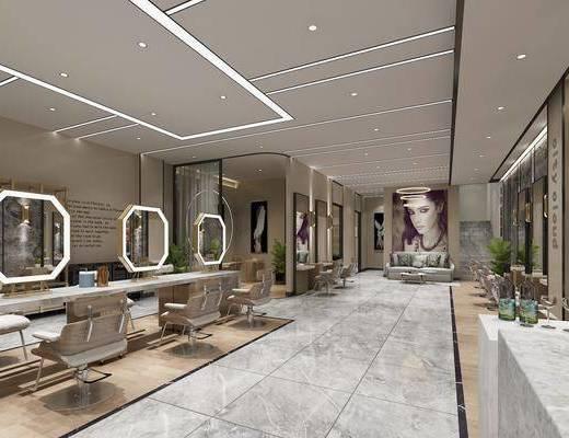 理发店, 现代理发店, 单椅, 镜, 沙发, 植物, 盆栽, 现代