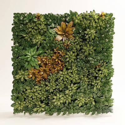 墙饰, 植物墙, 现代