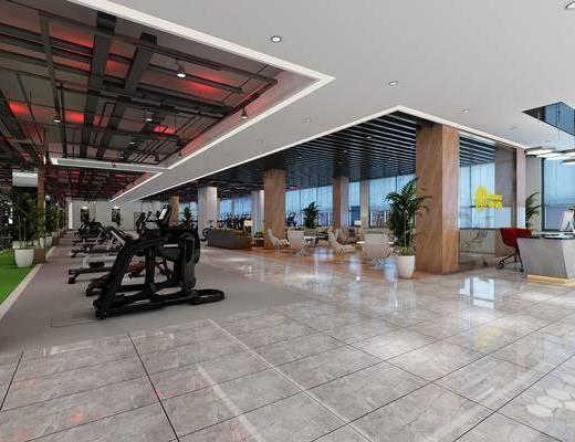 健身房, 健身器材, 现代