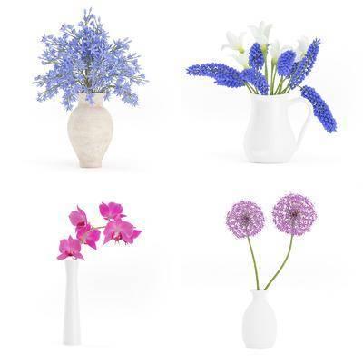 花瓶, 花卉, 植物, 现代