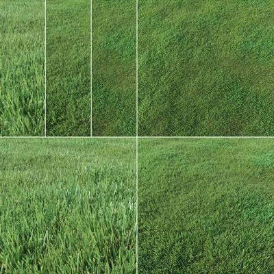 草坪, 草地, 现代