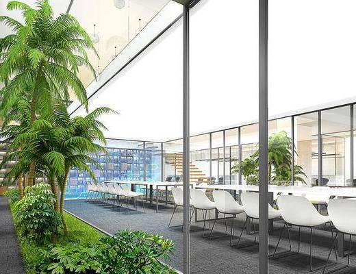 会议室, 桌椅组合, 盆栽植物
