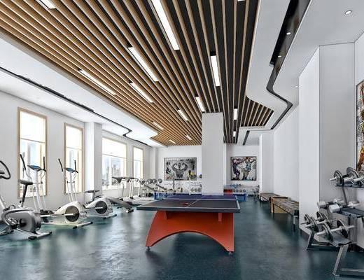 现代简约, 健身房, 写实, 乒乓球, 现代, 健身器材