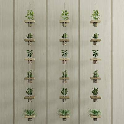 绿植, 盆栽, 植物, 现代