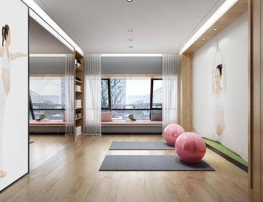 瑜伽室, 舞蹈房, 健身室, 瑜伽垫, 榻榻米, 现代