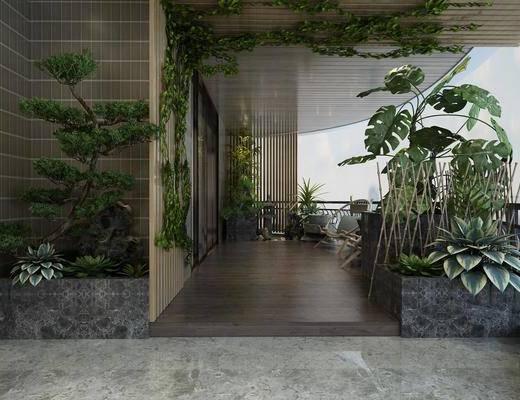 陽臺, 露臺, 盆栽, 植物, 單椅