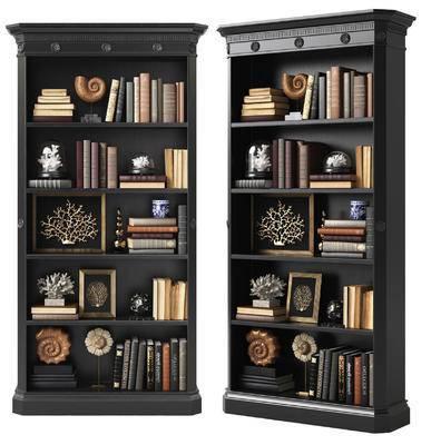 装饰柜, 书柜, 书籍, 珊瑚, 海螺, 装饰画, 摆件, 装饰品, 现代
