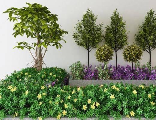 植物, 树木, 现代