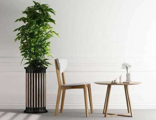 茶几, 单人椅, 盆栽, 现代