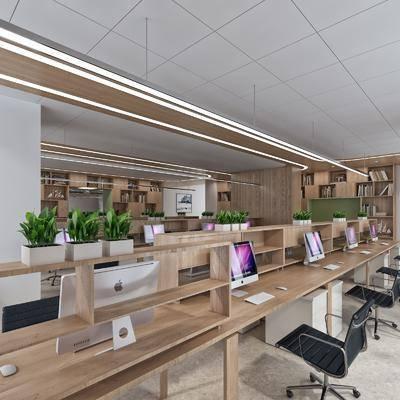办公区, 办公桌, 办公椅, 装饰柜, 书柜, 盆栽, 吊灯, 现代