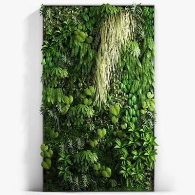 植物墙, 现代植物墙, 绿植