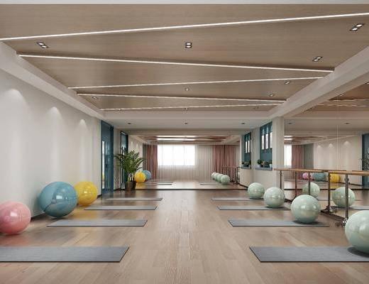 舞蹈室, 瑜伽室