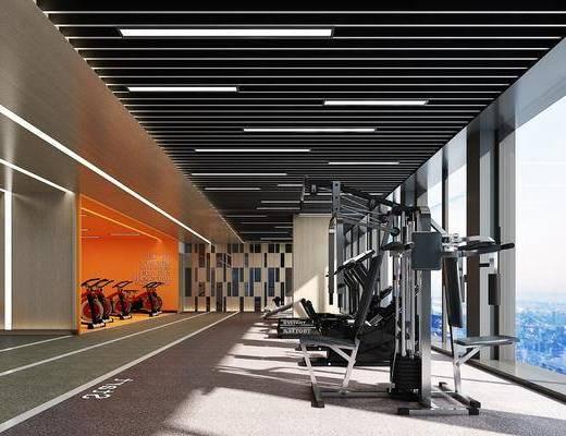健身器材, 健身房