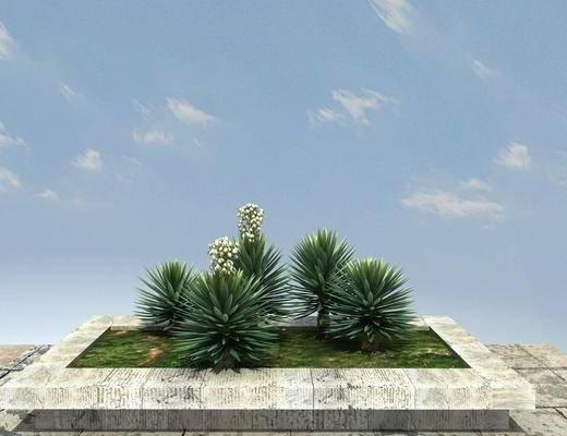 大树, 树木, 景观, 植物