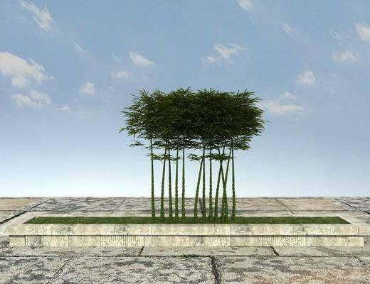 绿化, 景观, 植物, 组合