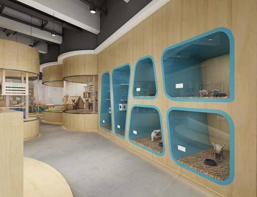 宠物店, 前台接待, 装饰架, 宠物狗, 食品, 现代, 吊灯组合