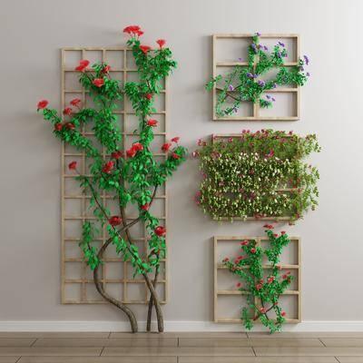 植物墙, 花卉, 绿植植物, 现代
