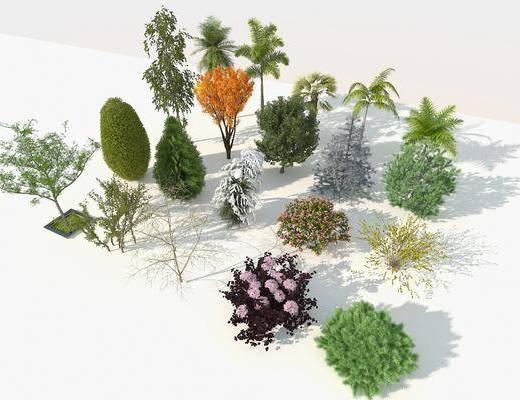現代樹木, 樹木, 室外樹木, 樹