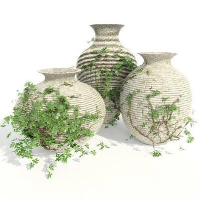 陶瓷器皿, 现代器皿, 藤蔓, 植物, 花瓶, 花卉, 现代