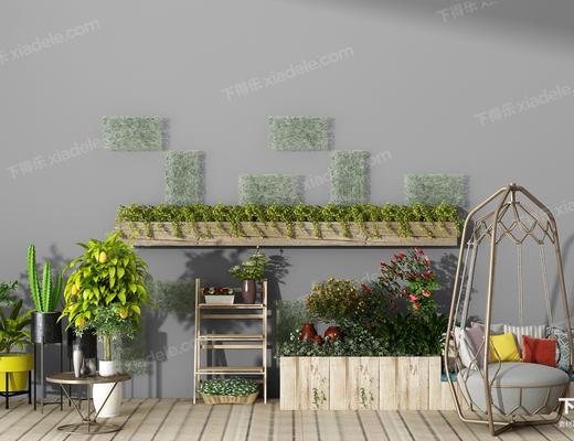 植物, 盆栽, 吊椅, 绿植