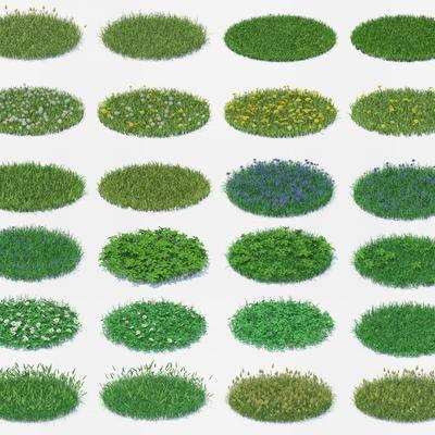 草地, 草坪, 花卉, 现代, 绿植