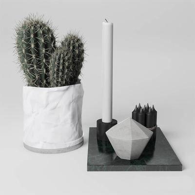 盆栽, 植物, 摆件组合, 北欧