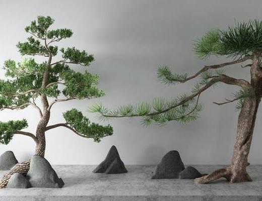 假山, 树木, 植物