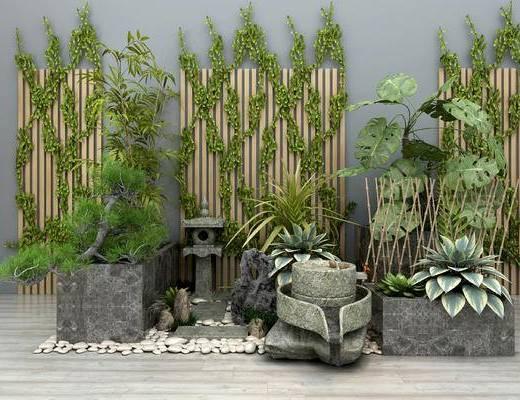 现代, 中式, 园林, 园艺小品, 盆栽, 植物, 绿植
