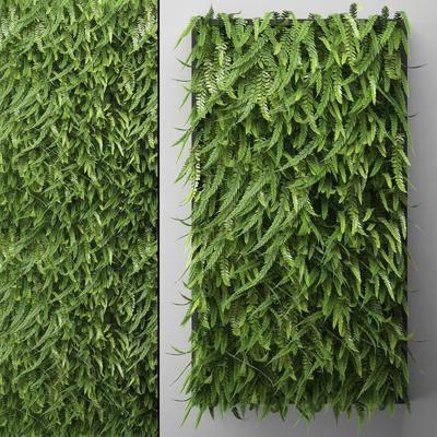 现代植物墙植物背景墙, 现代, 植物墙, 植物, 背景墙