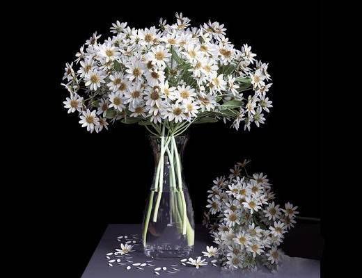 现代简约, 花瓶, 陈设品, 植物