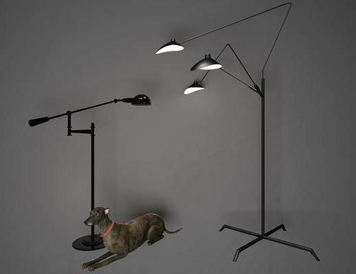 宠物狗, 高台灯, 落地灯, 现代