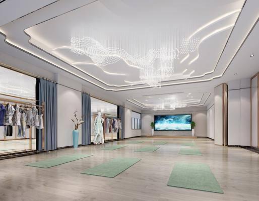 现代健身室, 现代舞蹈室, 现代多功能厅