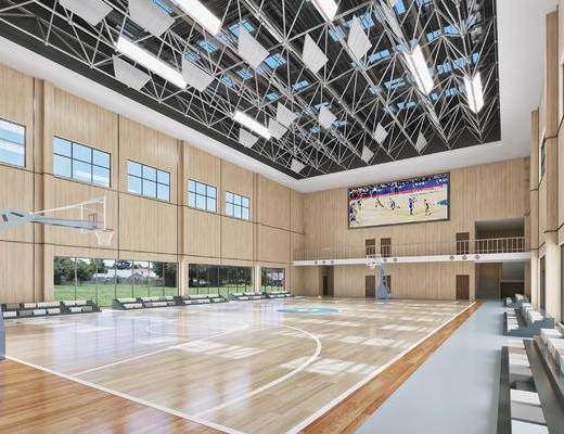 现代, 学校, 篮球场, 体育馆, 篮球馆, 篮球架