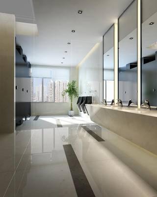 现代, 卫生间, 镜子, 盆栽, 便器, 洗手盆, 洗手台