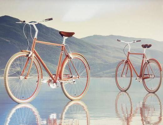 自行车, 现代