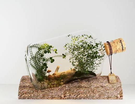 绿植植物, 花草, 摆件组合, 现代